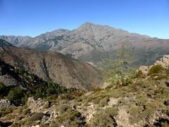Monte Padru et Capu Selulla depuis la Cima di u Finellu