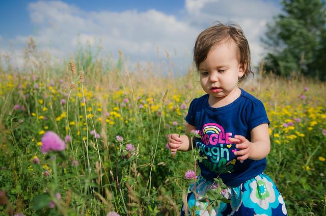 20140613-Coraline-Wildflowers-1546
