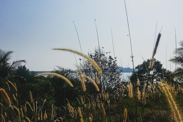 Koh Phayam Island