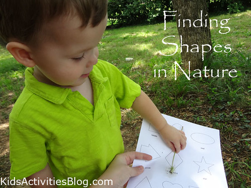 Finding Shapes in Nature (Photo by Trisha from Inspiration Laboratories at Kids Activities Blog)