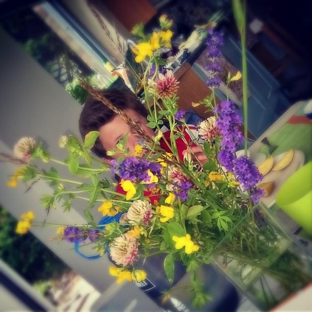 Harvey in the flowers