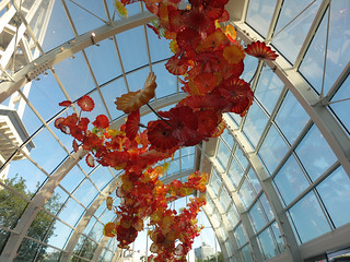sea312chihuly