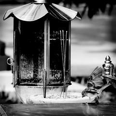 #fujifilm #xe2 #bw #blackandwhite #bwstyles_gf #bird #streetphoto #streetphotography #streetphoto_bw #streetstyle #streetstyles