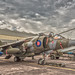 Small photo of Hawker Harrier