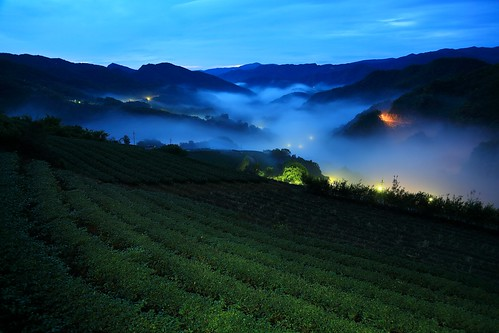 travel pink light mountain color fog comfortable night clouds creek sunrise canon relax landscape dawn spring view cloudy vibrant taiwan trails fresh valley rails rays nightview dawning 夜景 idyllic teagarden 風景 daybreak hillwood seaofclouds vigor 雲海 晨曦 pinglin 日出 vitality 茶園 landscapephotography colortemperature teaplantations 坪林 霧 energetic 清晨 teafield 北勢溪 雲霧 山景 ruralscenery 山谷 芒花 晨景 嵐 晨昏 山色 南山寺 色溫 霞光 彩霞 風景攝影 台灣風景 vehicletrack 新北市 newtaipeicity 朝氣 晨霞 谷景 琉璃光 樟空子 舒爽 aromaoftea