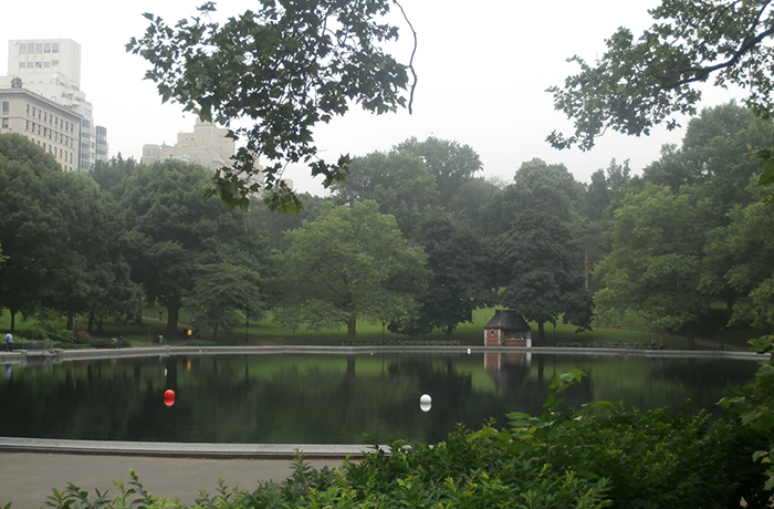 NYC - Central Park 16