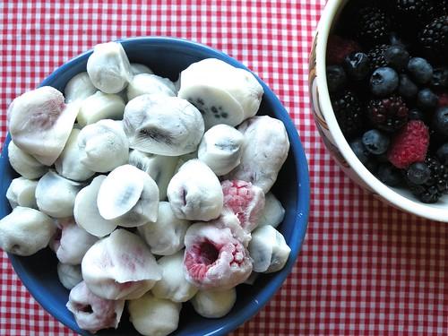 Mrs. Fields Secrets Yogurt Berries