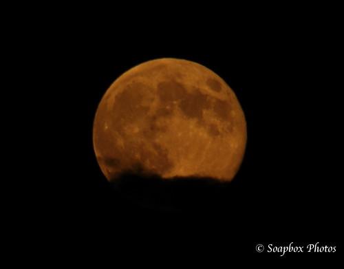 """August 2014 Super Moon"""