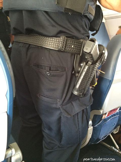 cops_plane_web