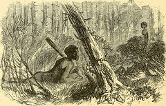 "Image from page 457 of ""The boy travellers in Australasia : adventures of two youths in a journey to the Sandwich, Marquesas, Society, Samoan and Feejee islands, and through the colonies of New Zealand, New South Wales, Queensland, Victoria, Tasmania, and"