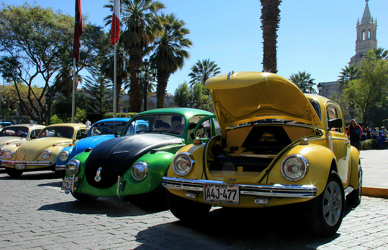 Beetles, Arequipa