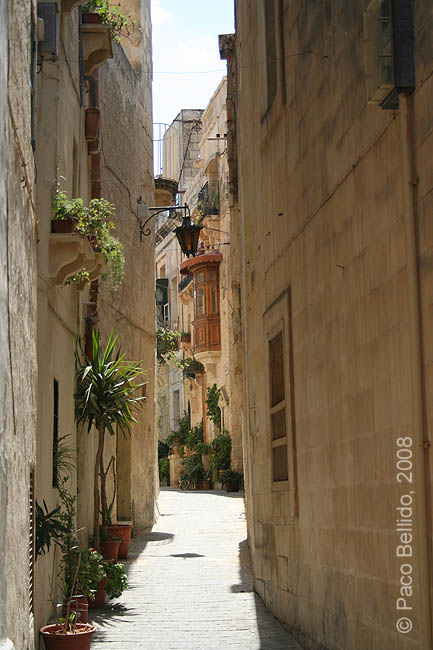 Una calle de Rabat. © Paco Bellido, 2008