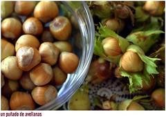 nuts & seeds(0.0), vegetable(0.0), shallot(0.0), plant(0.0), crop(0.0), chestnut(1.0), hazelnut(1.0), produce(1.0), fruit(1.0), food(1.0),