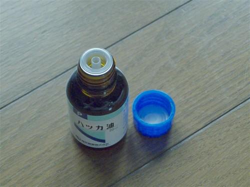 s-DSCF5236