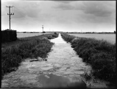 Lines drains and droves - Fenland #1