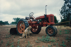 agriculture, farm, field, soil, vehicle, plough, agricultural machinery, land vehicle, rural area, tractor,