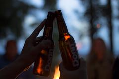 Donn beer