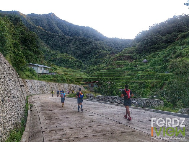Getting up close to the rice terraces