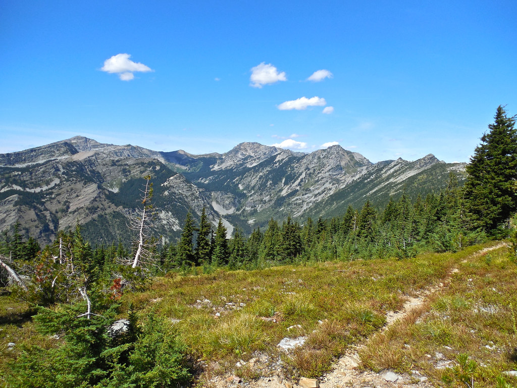 Trail 63/Trail 360: Cabinet Mountains Wilderness