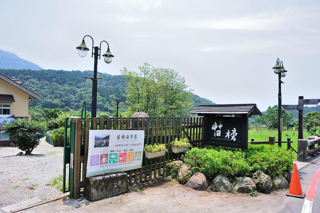 陽明山竹子湖【苗榜花園餐廳】賞海芋、饗野菜的竹子湖餐廳