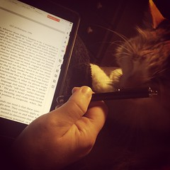 Zuzu blesses the stylus.