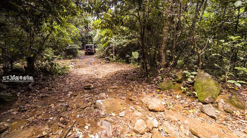 Sakleshpur-Trail-3