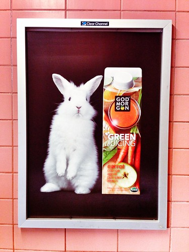 bunny and juice campaign