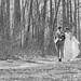 Adam and Sarah's Wedding