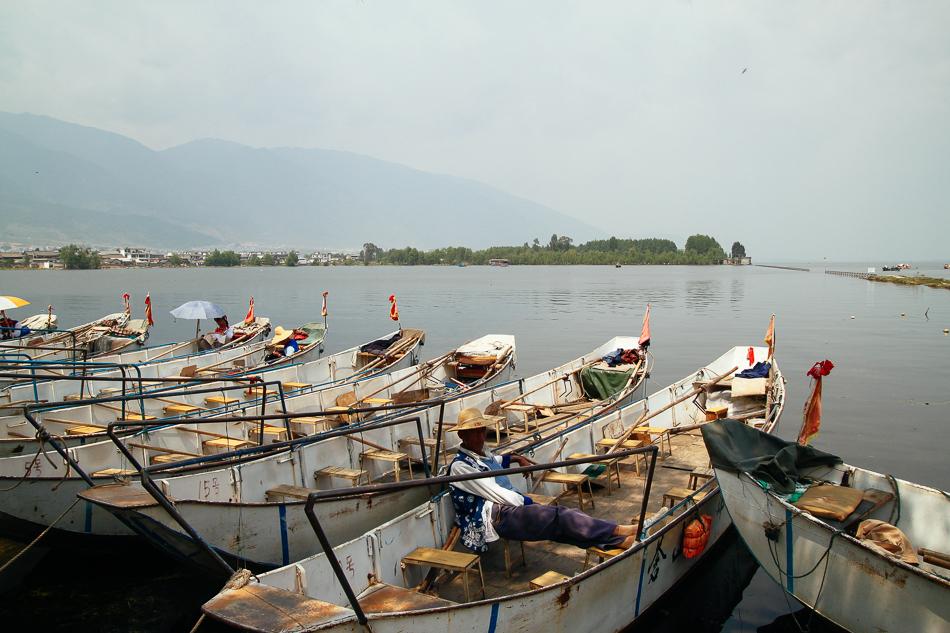 Dali - Cormorants on Erhai Lake