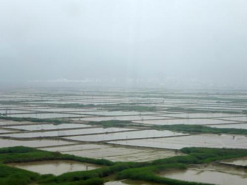 Zhejiang-Wenzhou-Ningbo-train (21)