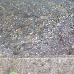 Trasparente #giriingiro #lagomaggiore #isolabella