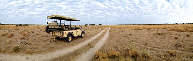 Kalahari Plains  29
