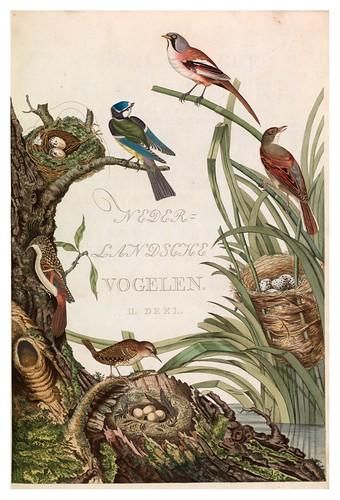 013-Portada del tomo 2- Nederlandsche vogelen- Nationale bibliotheek van Nederland