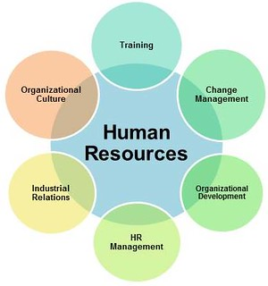 home   human resources   guides de recherche · research guides at    adapted hr diagram