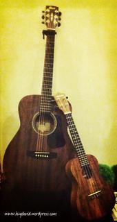 Sing Praises - 6+4 strings