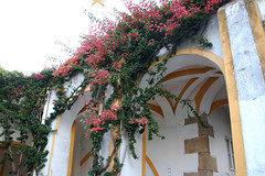 Évora, Palacio Cadaval