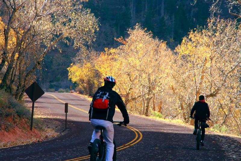 IMG_6988 Biking, Zion National Park