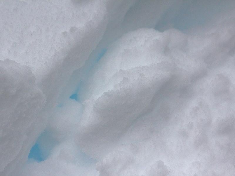 IMG_8425 Ranger-Led Snowshoe Walk
