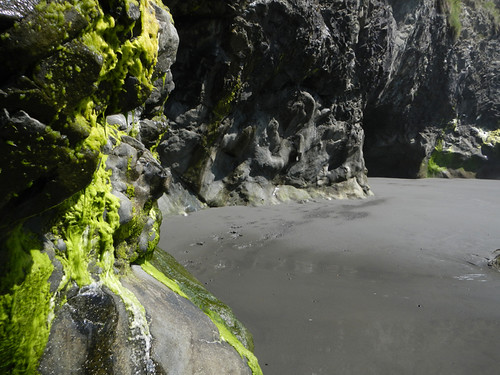Caves with Green Seaweed at Ruby Beach in the Olympic National Park, Washington