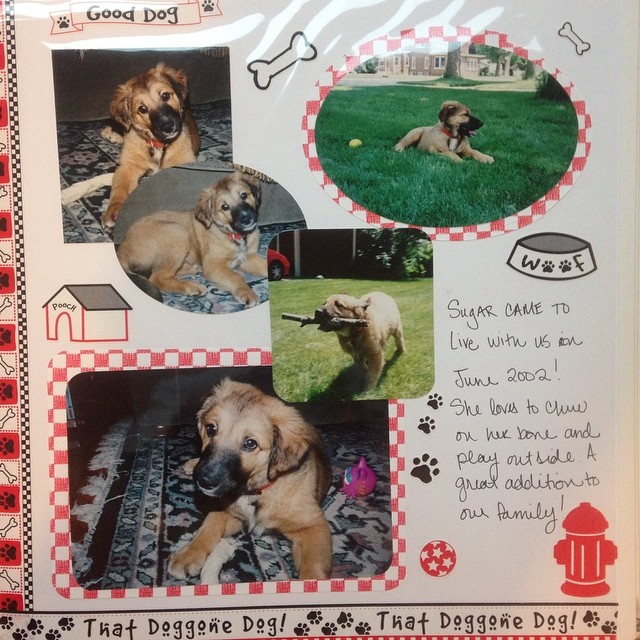 A scrapbook page of puppy Sugar that I made in 2002.