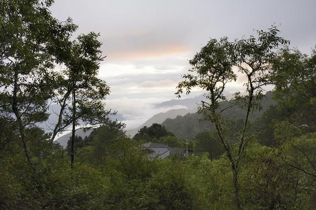 玉山林道所見的阿里山雲海