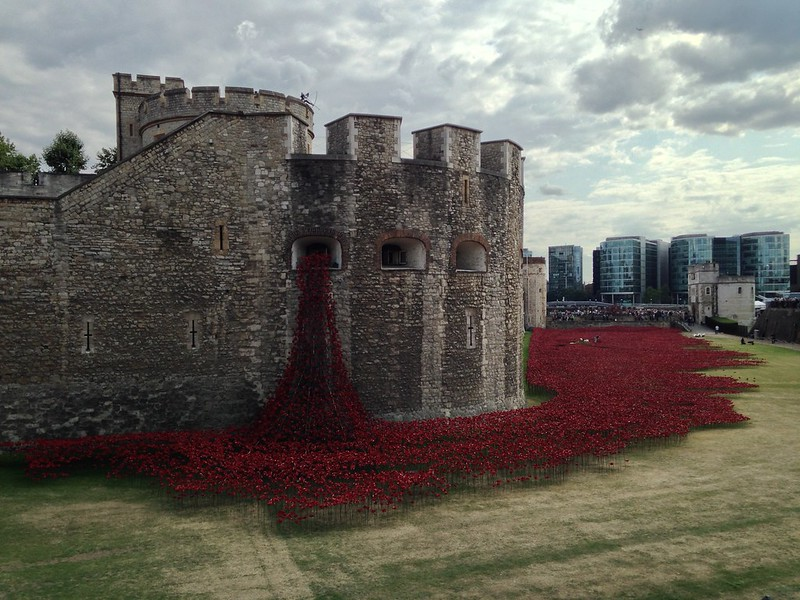 Tower of London poppies pouring from castle window, seemingly spilling onto moat lawn
