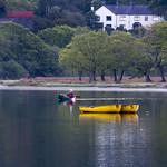 Dawn Canoeist