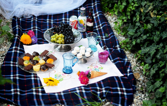 Retro_picnic_party (7)