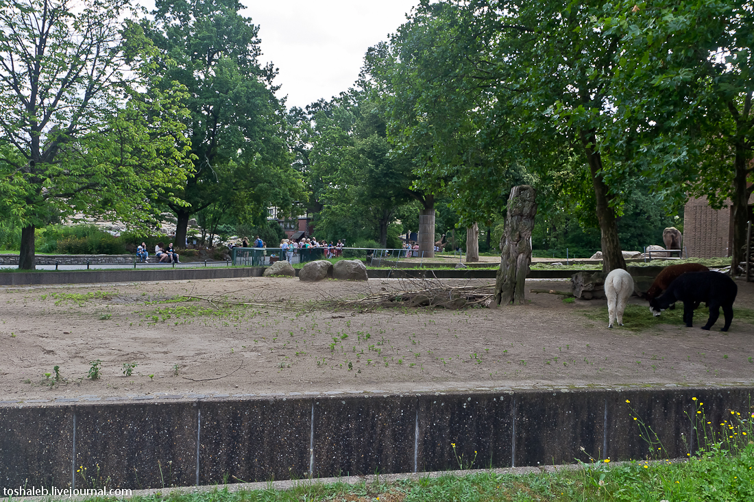 Берлин_зоопарк-15