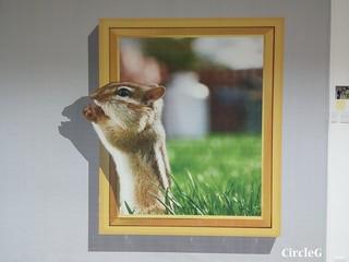 CIRCLEG 住在月亮的外星兔 中秋做乜好 加菲貓 放鬆一下立體相館 3D 相館 (26)