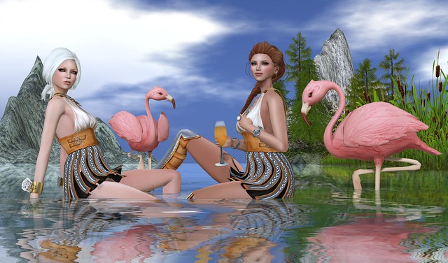 Pretty Flamingos_053