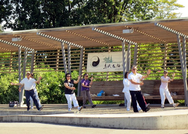 Tai chi at Queen Elizabeth Park