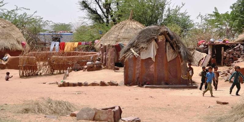 270 Camel safari a Jaisalmer (90)