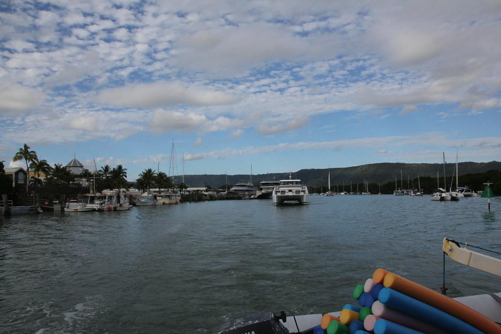 great barrier reef, opal reef, wavelength tours, port douglas, low isles, opal reef